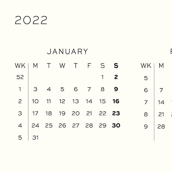 Weekly Planner & Notebook, 12-month, 2022, English